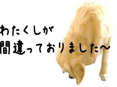 縺昴≧縺・_convert_20101010095350