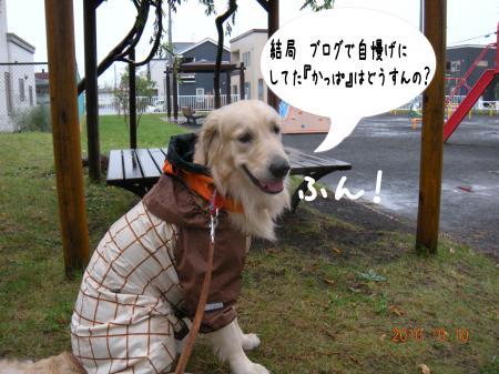 縺ゅa3_convert_20101011172709