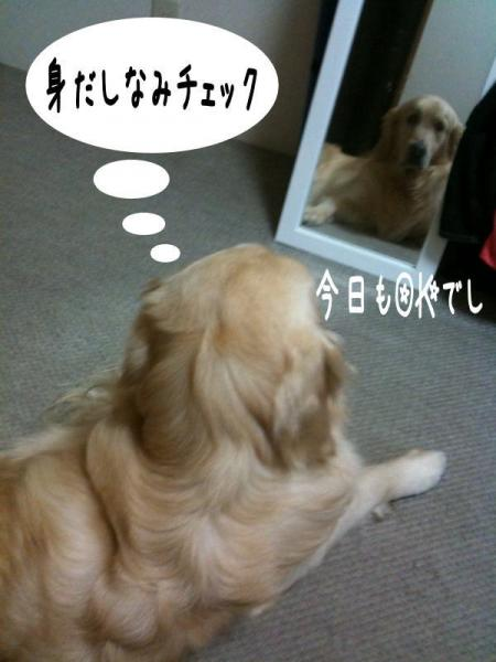 髮ィ5_convert_20101011180045