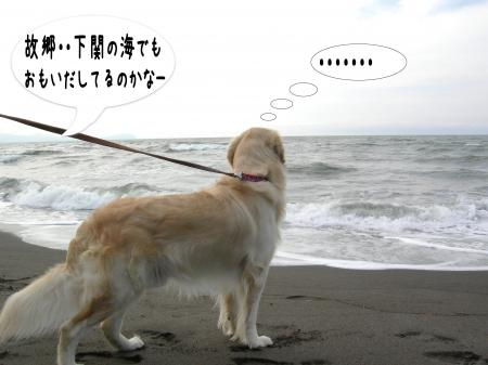 遏ウ迢ゥ4_convert_20101011213027