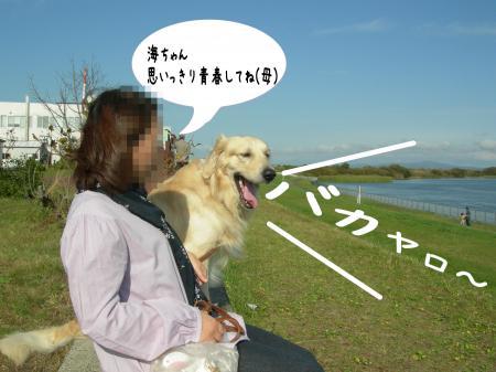 遏ウ迢ゥ2_convert_20101011212909