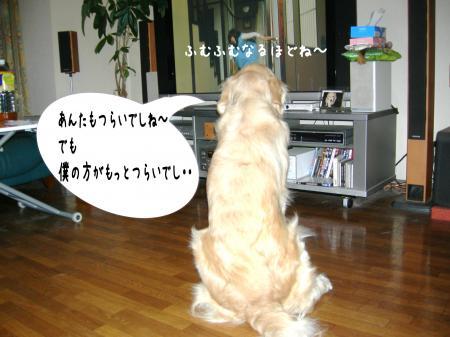 縺翫・繧医≧6_convert_20101016163815