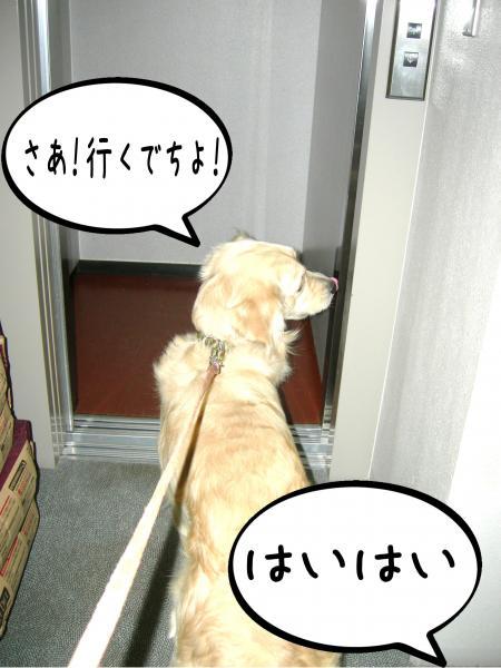 縺翫・繧医≧3_convert_20101016163621