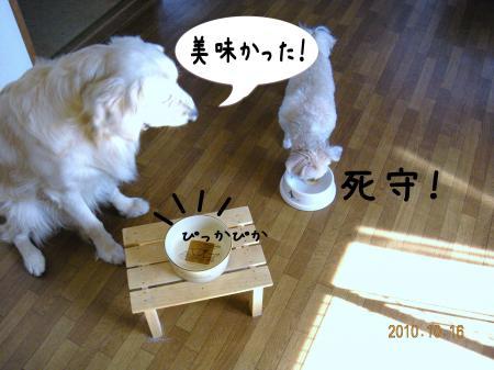 閧峨∪繧・_convert_20101017104531