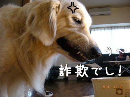 閧峨∪繧・_convert_20101017111808