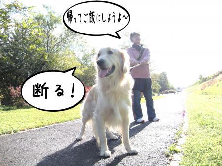 雖後o繧後※繧・_convert_20101019150744