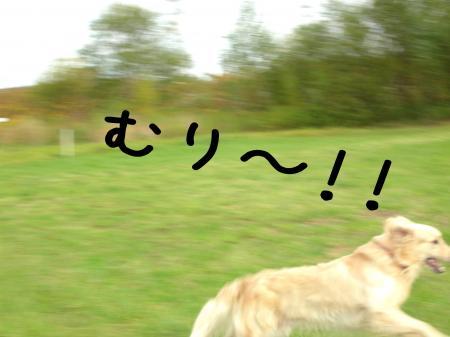 縺阪g縺イ6_convert_20101022114846