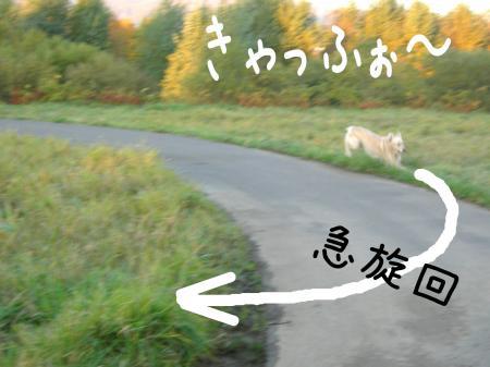 縺阪g縺イ4_convert_20101022114732