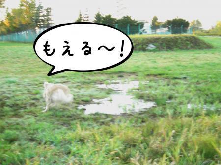 縺阪g縺イ5_convert_20101022114807