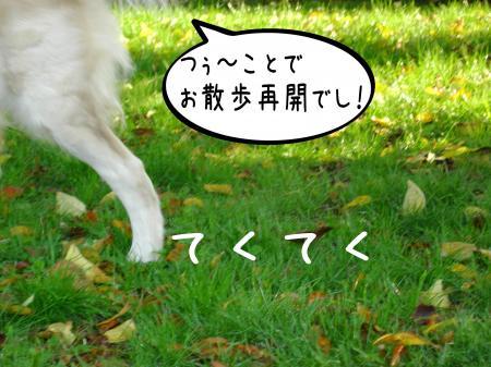 縺阪g縺イ2_convert_20101022114600