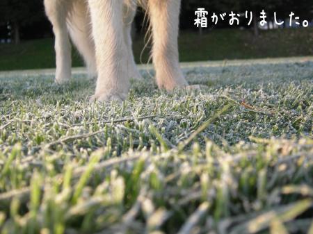 縺阪g縺イ_convert_20101022114307