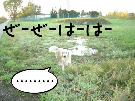 縺阪g縺イ7_convert_20101022114937