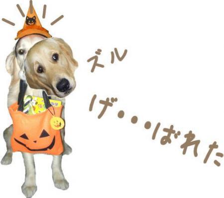 縺コ縺ゥ繧・_convert_20101023103832
