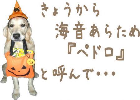 縺コ縺ゥ繧・_convert_20101023103734
