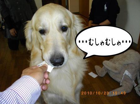 蜷榊絢4_convert_20101025104525