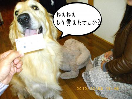 蜷榊絢3_convert_20101025104444