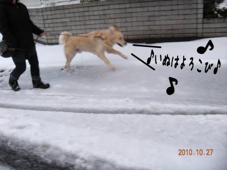 縺ェ縺ケ_convert_20101027221944