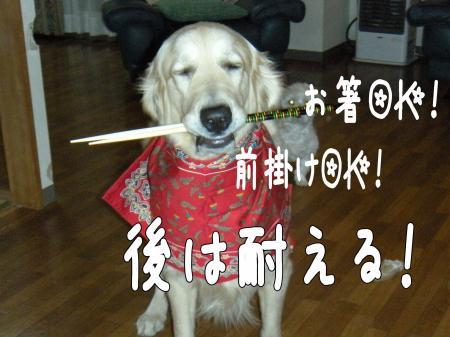 縺ェ縺ケ6_convert_20101027222258