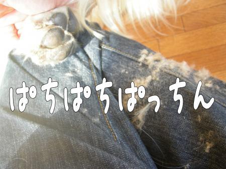 縺カ繧峨▲縺励s縺・_convert_20101031112941