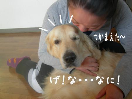 縺カ繧峨▲縺励s縺・_convert_20101031112727
