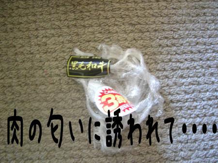 縺ケ縺」縺ゥ4_convert_20101031215624