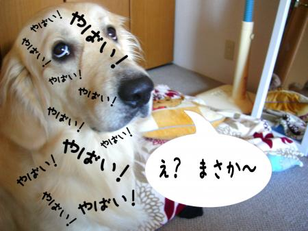 縺ケ縺」縺ゥ2_convert_20101031215505