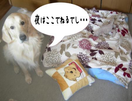 縺ケ縺」縺ゥ1_convert_20101031215401