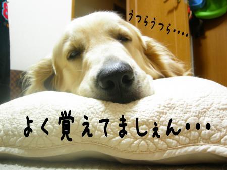 縺ケ縺」縺ゥ8_convert_20101031215850