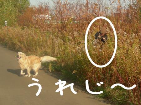 謐懃エ「7_convert_20101102121948