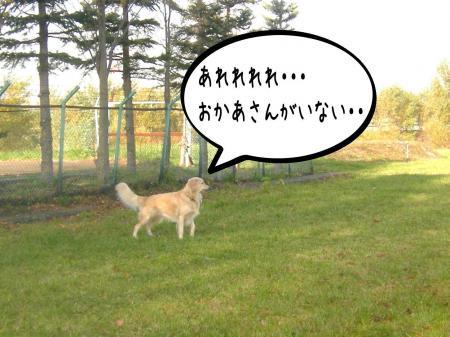 謐懃エ「1_convert_20101102114751