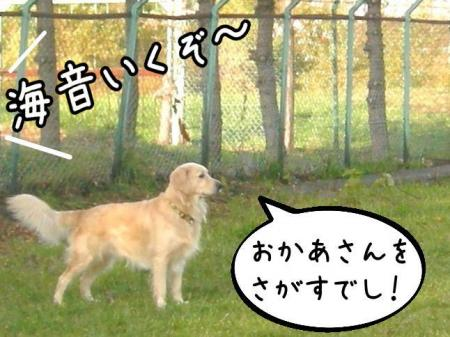 謐懃エ「2_convert_20101102114827