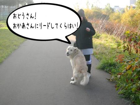 謐懃エ「10_convert_20101102132328