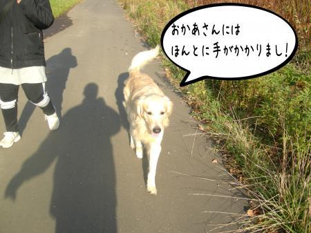 謐懃エ「9_convert_20101102122606