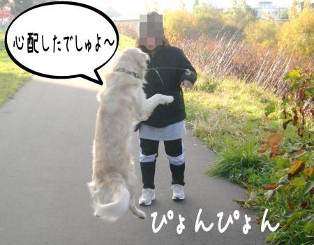 謐懃エ「8_convert_20101102134726