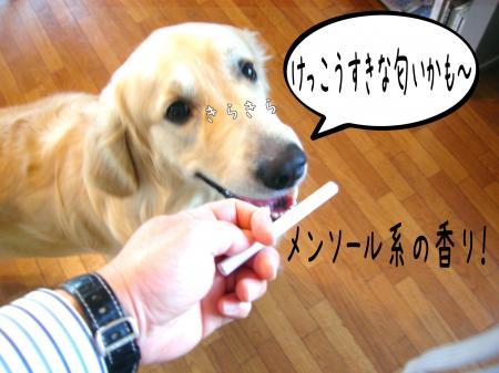蝟ォ辣・_convert_20101104115212