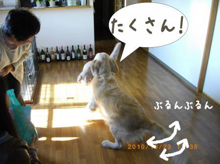 縺励・縺・-5_convert_20101106220834