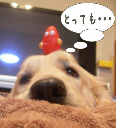 縺励・縺・-1_convert_20101106220607