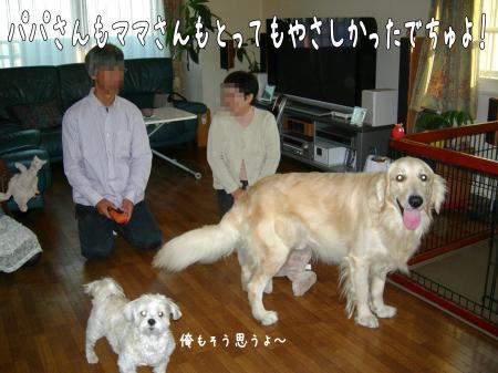 縺励・縺・-9_convert_20101106221018