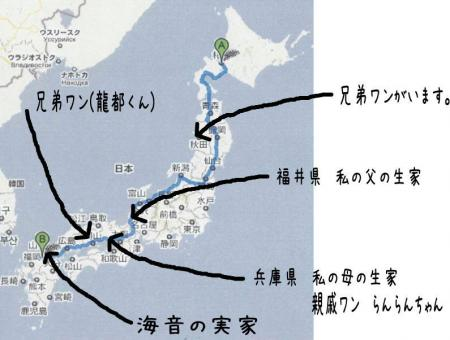 驥悟クー繧・_convert_20101110212826