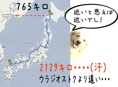 驥悟クー繧・_convert_20101110212756