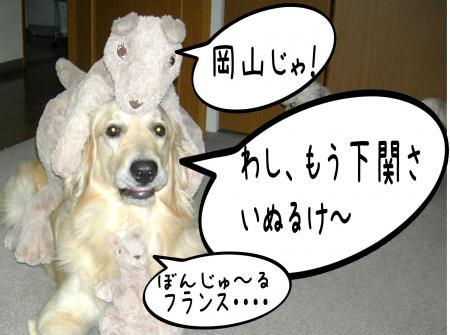 驥悟クー繧・_convert_20101110212654