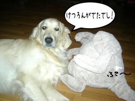 驥悟クー繧・_convert_20101110212621
