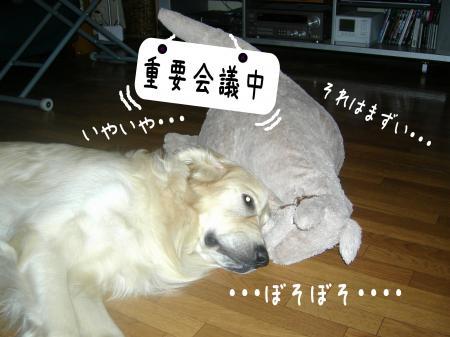 驥悟クー繧・_convert_20101110212543