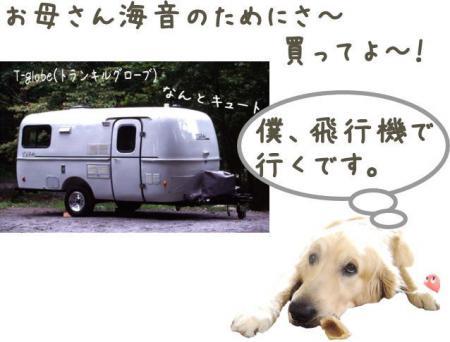 驥悟クー繧・_convert_20101110212932