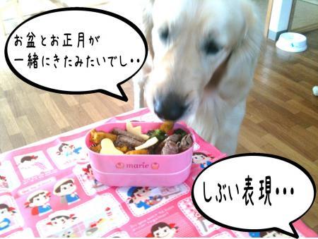 繝斐け繝九ャ繧ッ4_convert_20101116124933