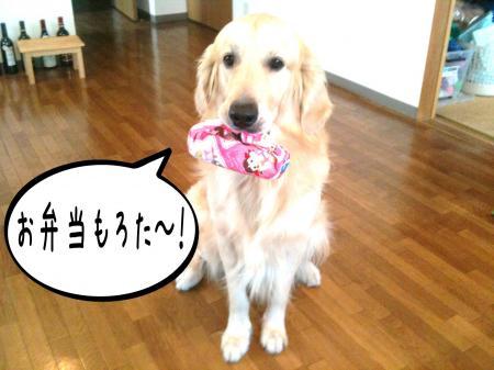 繝斐け繝九ャ繧ッ3_convert_20101116124858