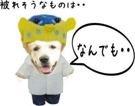 繝斐け繝九ャ繧ッ11_convert_20101116125509