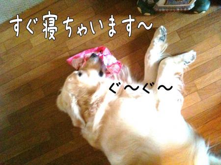 繝斐け繝九ャ繧ッ10_convert_20101116125446