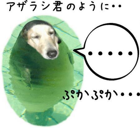繝斐け繝九ャ繧ッ9_convert_20101116125414