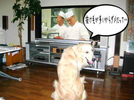 霆・_convert_20101118125310